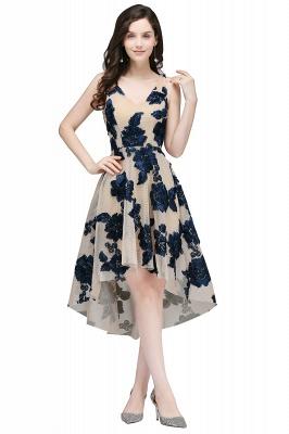 COCO | Short Appliques Tulle V Neck Quince Dama Dresses_3