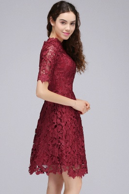 A-Linea Vestidos de Fiesta corte | Lace Borgo_a cuello redondo_4
