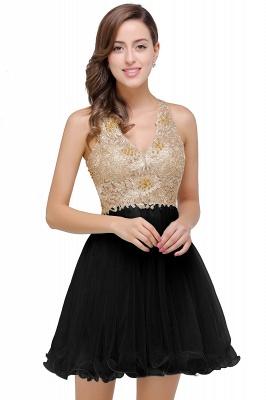 Short Tulle Quinceanera V-Neck Appliques Sleeveless Dama Dresses_3