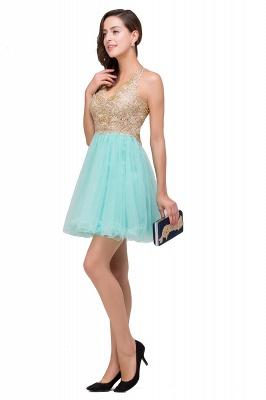 Short Tulle Quinceanera V-Neck Appliques Sleeveless Dama Dresses_8