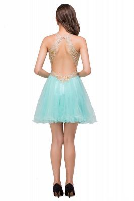 Short Tulle Quinceanera V-Neck Appliques Sleeveless Dama Dresses_6