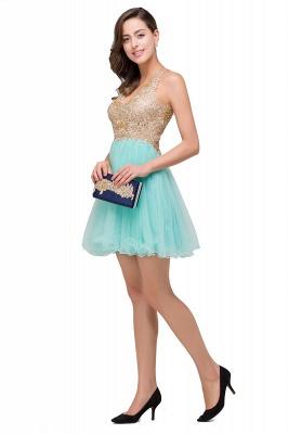 Short Tulle Quinceanera V-Neck Appliques Sleeveless Dama Dresses_7