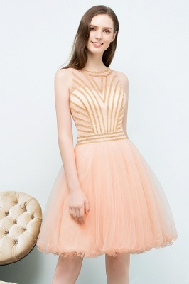 SNOW | Quinceanera Short Sleeveless Beading Tulle Dama Dresses_8