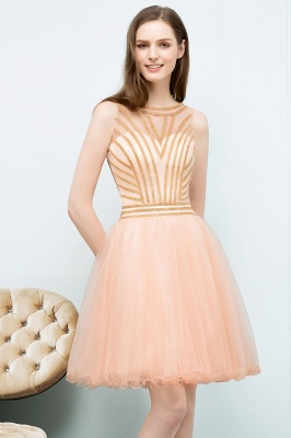 SNOW | Quinceanera Short Sleeveless Beading Tulle Dama Dresses_1