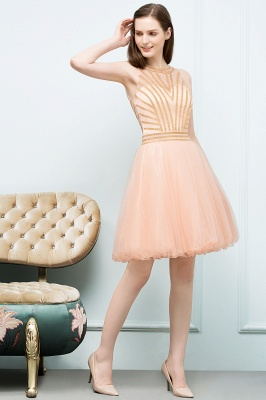 SNOW | Quinceanera Short Sleeveless Beading Tulle Dama Dresses_7
