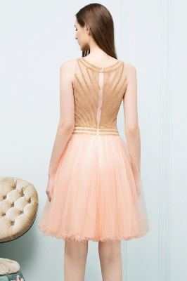 SNOW | Quinceanera Short Sleeveless Beading Tulle Dama Dresses_3