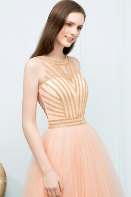 SNOW | Quinceanera Short Sleeveless Beading Tulle Dama Dresses_4