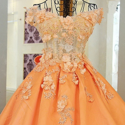 Chic Sweetheart Sleeveless Quinceanera Dress with Flowers_5