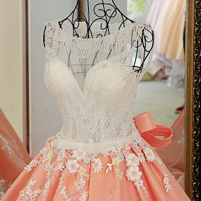 Sleeveless Ball-gown Flower Appliques Crystal Quinceanera Dresses_3