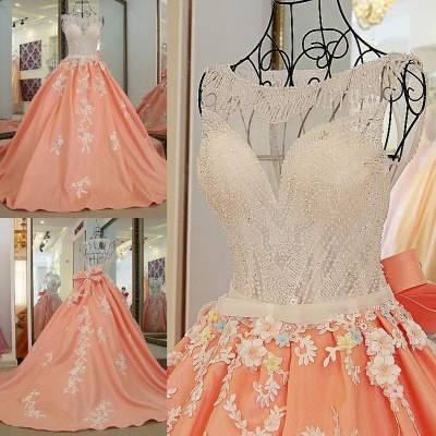 Sleeveless Ball-gown Flower Appliques Crystal Quinceanera Dresses_4