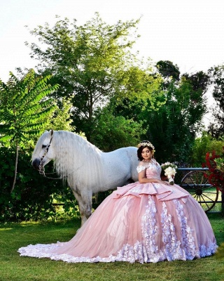 Fascinating Off-the-shoulder Appliques Ball Gown Quinceanera Dresses | Appliques 15 Dresses Long_3