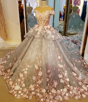 Vintage Short Sleeves Floral Appliqued Tulle Ball Gown Quinceanera Dresses_2