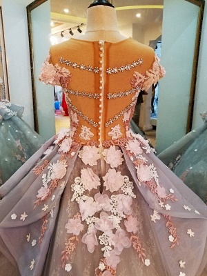 Vintage Short Sleeves Floral Appliqued Tulle Ball Gown Quinceanera Dresses_4