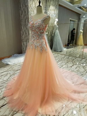 Pink Sleeveless Appliques Tulle Brush Train Quinceanera Dresses_2