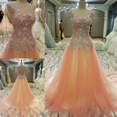 Pink Sleeveless Appliques Tulle Brush Train Quinceanera Dresses_1