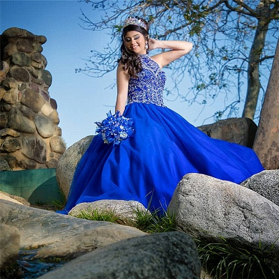 Wonderful Royal Blue High-neck Appliques Ball Gown 15 Dresses | Sleeveless Quinceanera Dresses Long_2