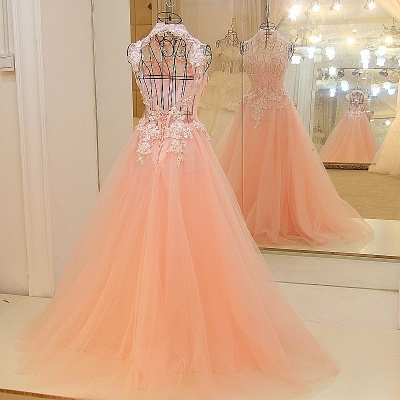 Elegant High Neck Appliqued Tulle Long Quinceanera Dresses_3