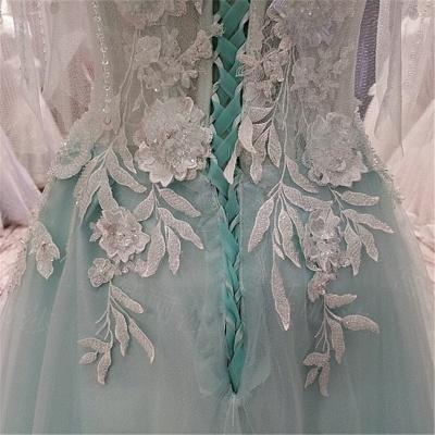 Elegant Lace-up Appliqued Tulle Floor Length Quinceanera Dresses_5