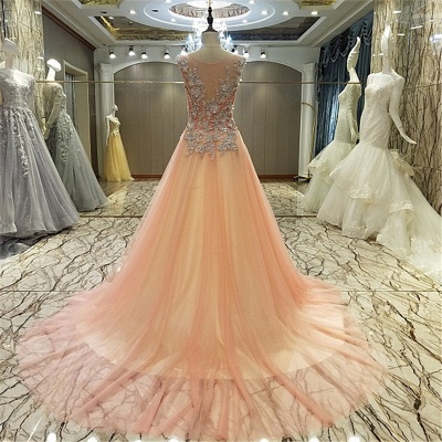 Pink Sleeveless Appliques Tulle Brush Train Quinceanera Dresses_3