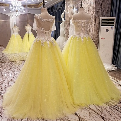 Short Sleeves Long Tulle Floral Appliques A-line Quinceanera Dresses_2