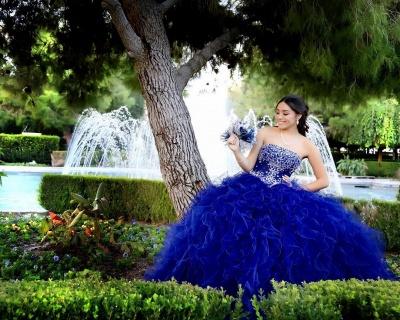 Gorgeous Royal Blue Strapless Sleeveless Beadings Quinceanera Dresses | Ruffles Ball Gown XV Dresses_3