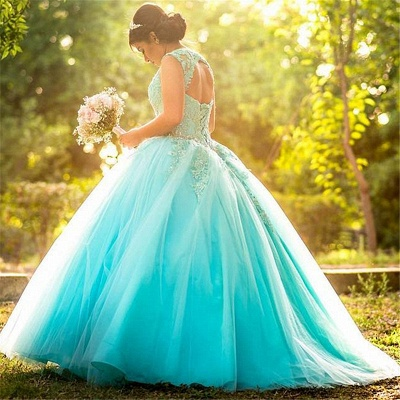 Exquisite Blue Jewel Beadings Ball Gown Quinceanera Dresses | Appliques Sweet 16 Dresses Long_2