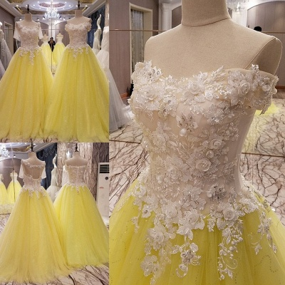 Short Sleeves Long Tulle Floral Appliques A-line Quinceanera Dresses_1
