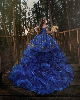 Charming Blue Off-the-shoulder Embroidery Ball Gown Appliques Quince Dresses | Ruffles 16 Dresses Long_2