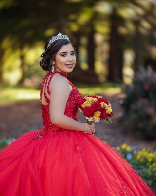 Pretty Ball Gown High-Neck Appliques Sleeveless Red Quinceanera Dress_6
