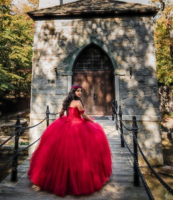 Off the Shoulder Appliques Pearls Burgundy Tulle Quinceanera Dress_3