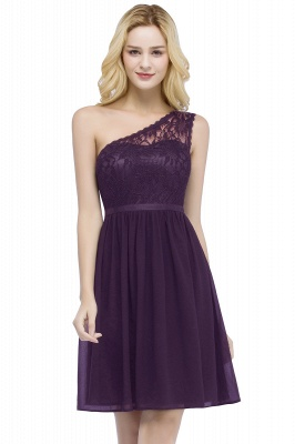 ROSA | Quinceanera Short One-shoulder Lace Top Chiffon Dama Dresses with Sash_2