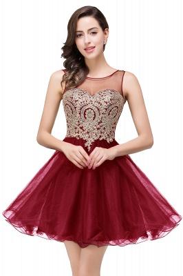 ESTRELLA | Quinceanera Crew Short Sleeveless Appliques Prom Dress_1