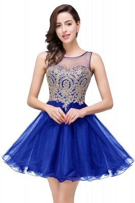 ESTRELLA | Quinceanera Crew Short Sleeveless Appliques Prom Dress_4