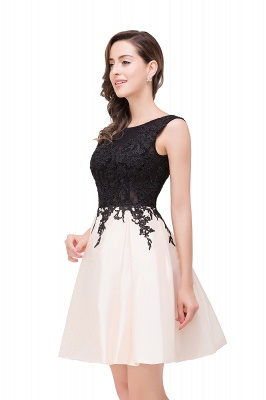 EVA | Quinceanera Sleeveless Lace Appliques Short Dama Dresses_10