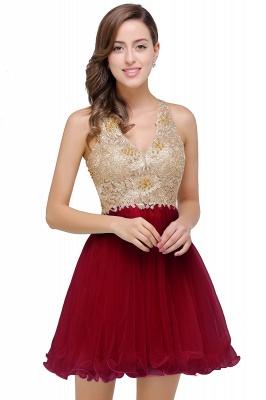 Short Tulle Quinceanera V-Neck Appliques Sleeveless Dama Dresses_1