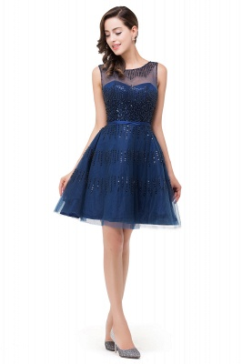 FATIMA | Quinceanera Sleeveless Crew Tulle Appliques Short Dama Dresses_1