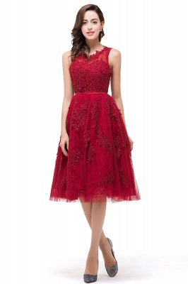 DANA | Quinceanera Knee-Length Red Lace Tull Dama Dresses with sequins_4