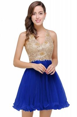 Short Tulle Quinceanera V-Neck Appliques Sleeveless Dama Dresses_2