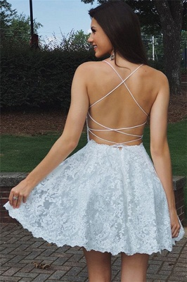 Simple Lace Open Back Dama Dresses Cheap | 2019 Hot Quinceanera Short Quince Dama Dress BC0565_3